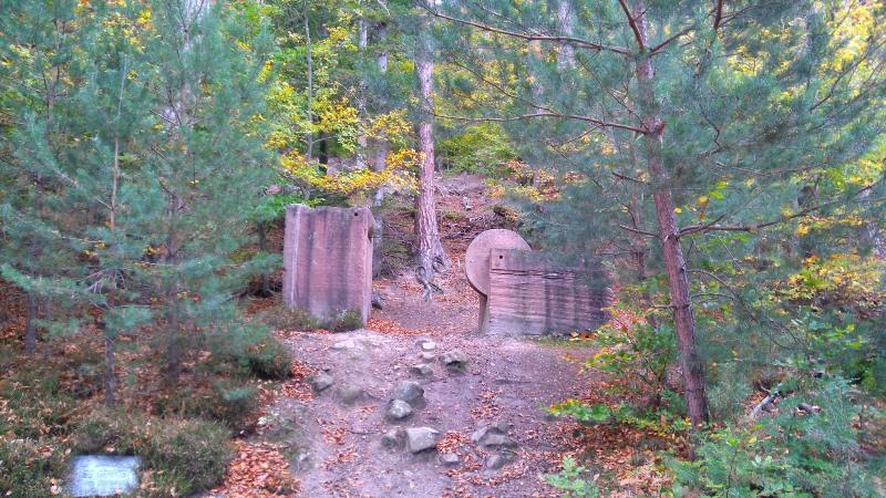 Randonnée Sentier du Sandweg - Symposium de sculptures