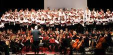 Les musiciens du choeur en concert