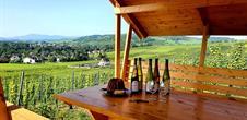 VinoRoute - Weintouren im Elsass