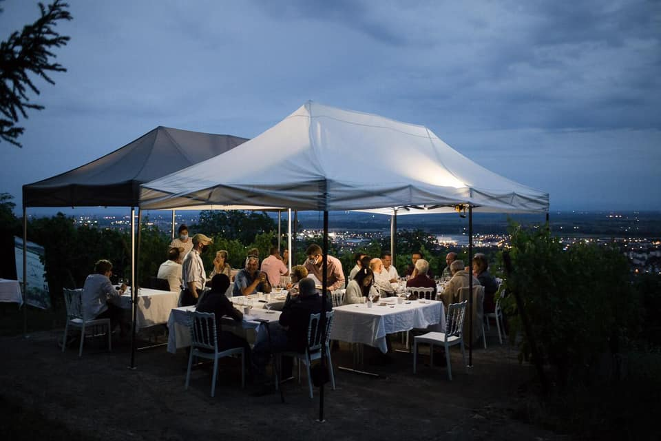 Dîner gastronomique entre forêt et vignes