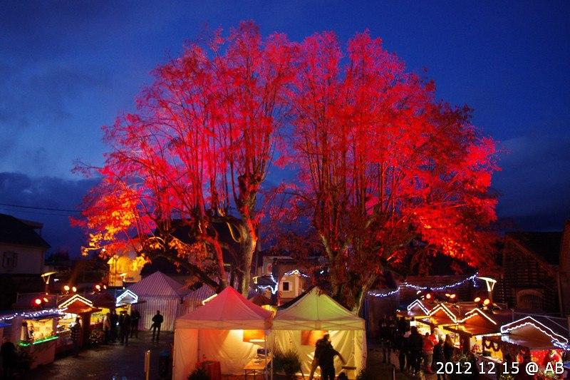 https://apps.tourisme-alsace.info/photos/mulhouse/photos/234007376_1.jpg