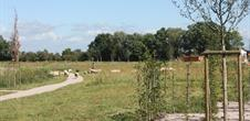 Parc du Rabbargala