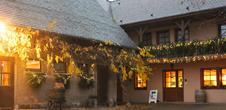 Cave de Noël : Vins Schoenheitz