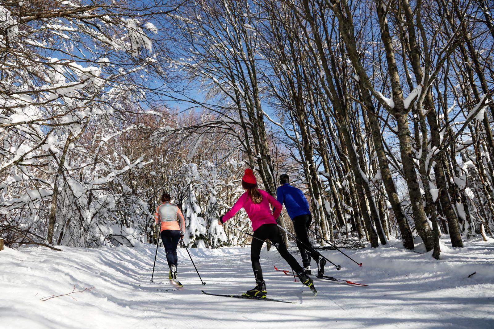 Skistation Les Trois Fours