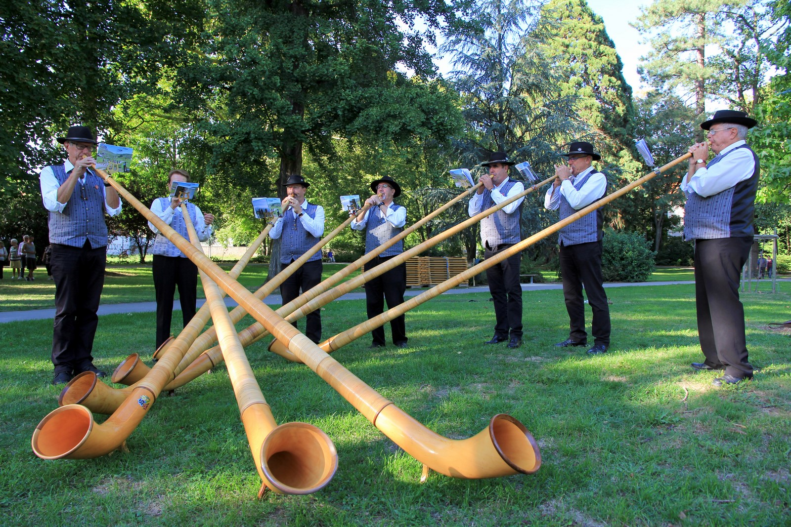 International Alp Horn Concert
