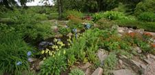Haut Chitelet - Botanic garden