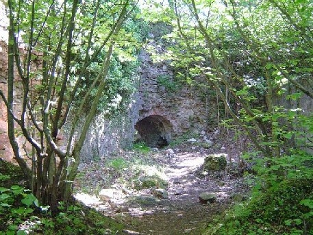 Château de Schwartzenbourg - ruines
