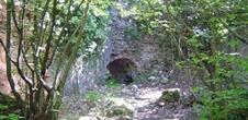 Les ruines du Château de Schwartzenbourg