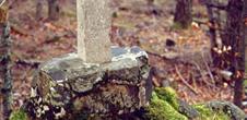 Stèles françaises - Schnepfenriedwasen