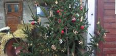Ferme de Noël : Ferme Schickel