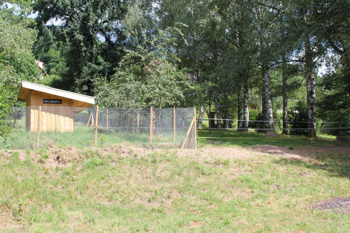 Gîte rural 68G2938
