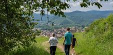 Alsace Écotourisme – Le vignoble, refuge de biodiversité