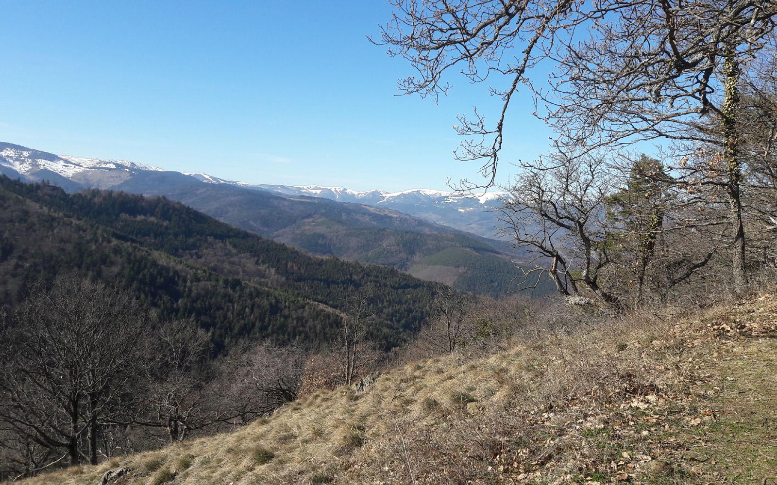 Club Vosgien : Le massif du Staufen