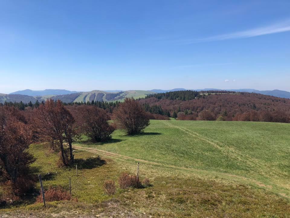 Randonnée au Schnepfenried - Le Schnepfenried