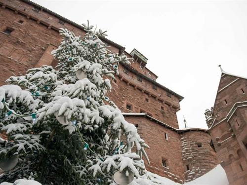 Le Haut-Koenigsbourg au fil de Noël - 2019