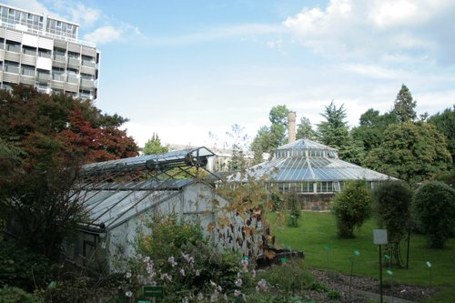 jardin botanique de l 39 universit de strasbourg strasbourg. Black Bedroom Furniture Sets. Home Design Ideas