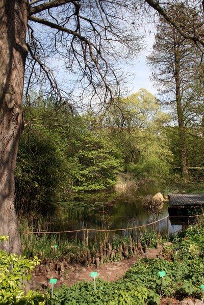 Jardin Botanique de l'Université de Strasbourg - Strasbourg