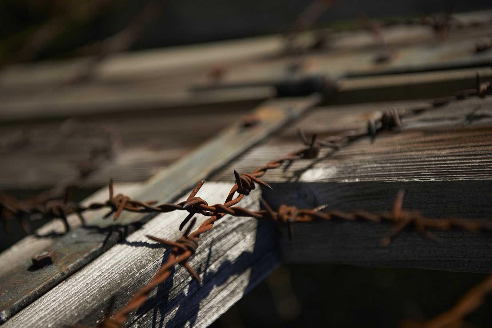 Centre européen du résistant déporté / Site de l'ancien camp de concentration de Natzweiler-Struthof
