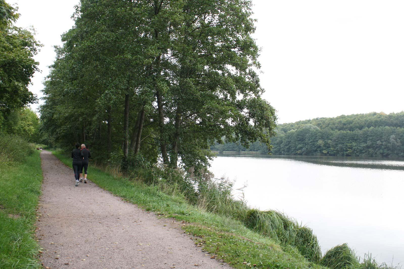 Wanderweg von dem Schwimmbad bis zum See von Reichshoffen