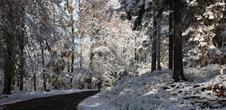 Circuit cyclotouristique : Au fil du pays de Niederbronn-les-Bains