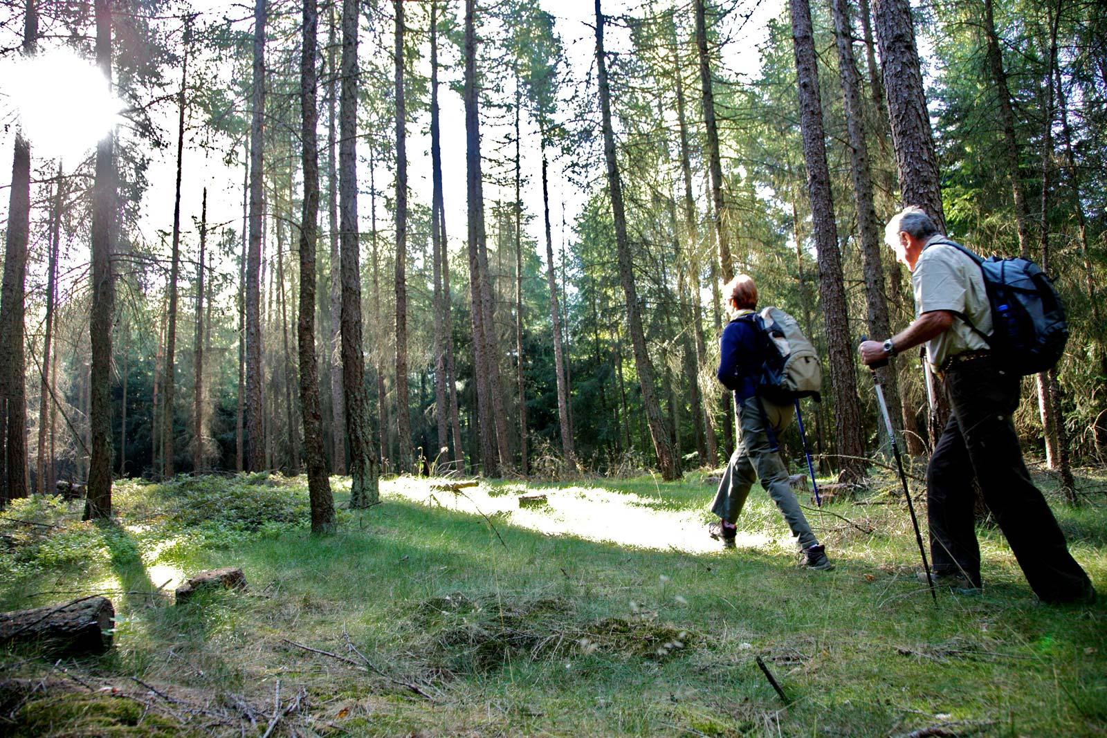 Wanderung entlang des Durschbaches