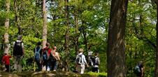 Boucle itinérante : 5 jours de rando dans les Vosges du Nord