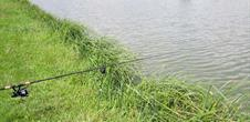 Etang  de pêche Syffersmatt