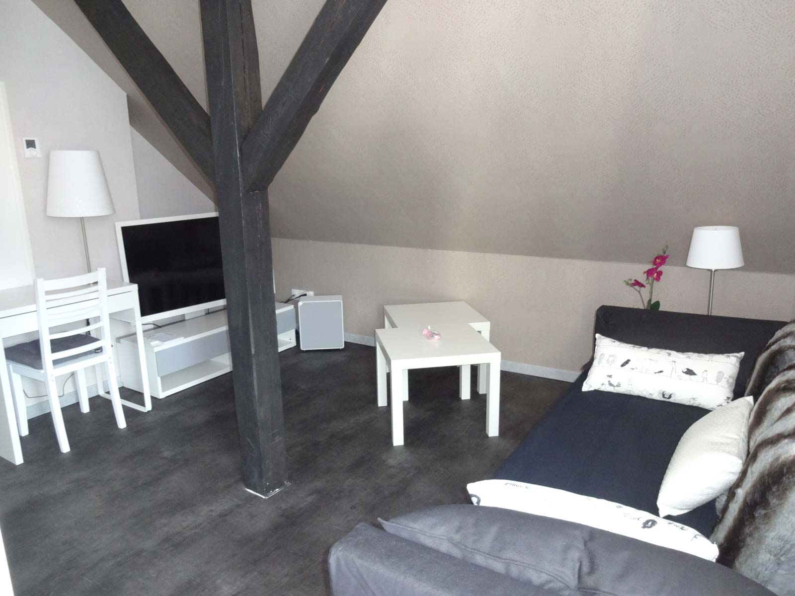 Accommodation of Mrs.Gambs - Résidence des Thermes Terrace