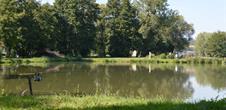 Etang de pêche de Baerenthal