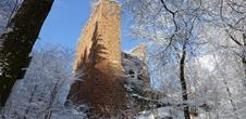 Castle Wasenbourg