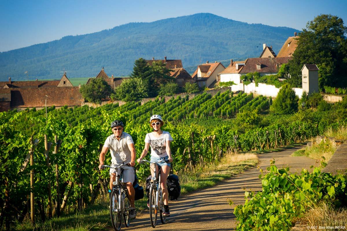 Super 07 Circuit vélo 'La route des vins' - Obernai VE93