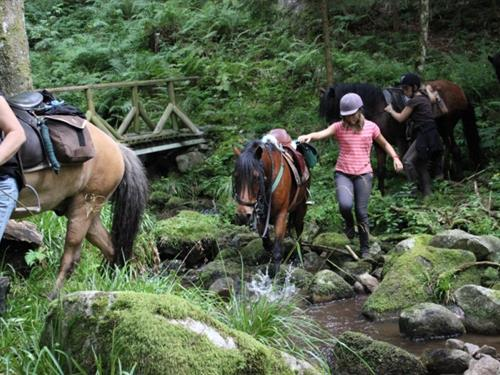 Oudin Équitation