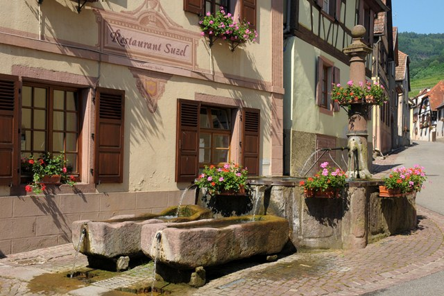 https://apps.tourisme-alsace.info/photos/ribeau/photos/229001544_1.jpg