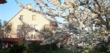 Ferienwohnung Les Amandiers / Theim, ville et village de chez nous