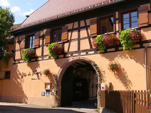 Maison d'hôtes Le Clos des Raisins