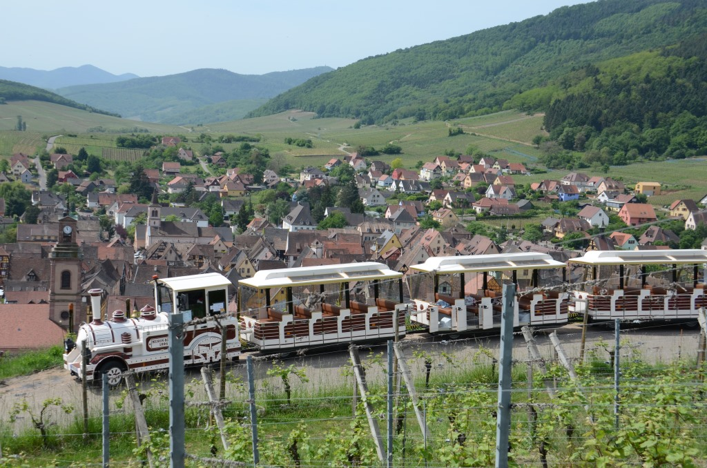 Sightseeing Tour in Riquewihr with the Mini Train