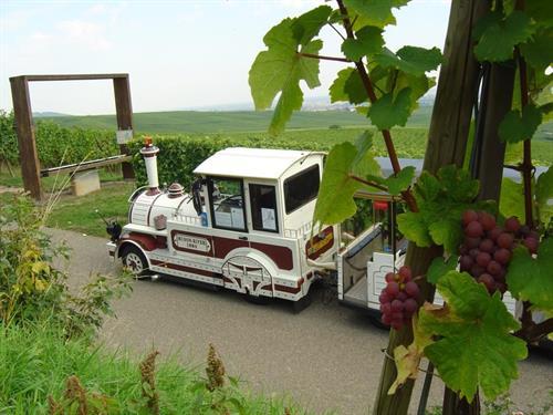 Visite de Ribeauvillé et de Hunawihr par le vignoble en petit train touristique