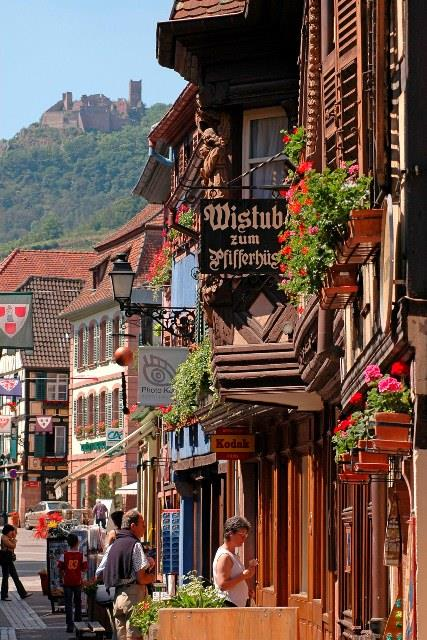 ©office de tourisme de Ribeauvillé