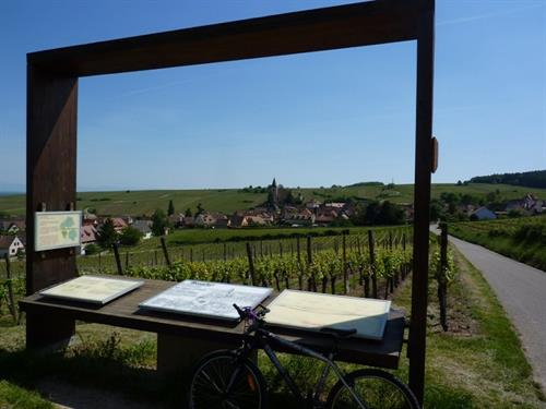 Grands Crus wine trail