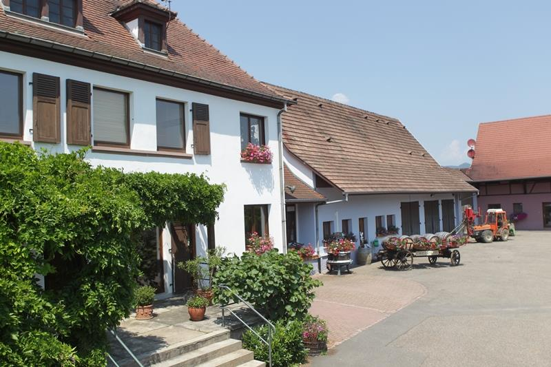 Domaine Baumann Zirgel