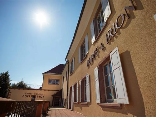 Weinbau / Château de Riquewihr DOPFF & IRION