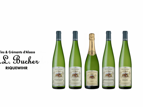 SARL BUCHER Jean-Luc  - Vins d'Alsace - Crémant
