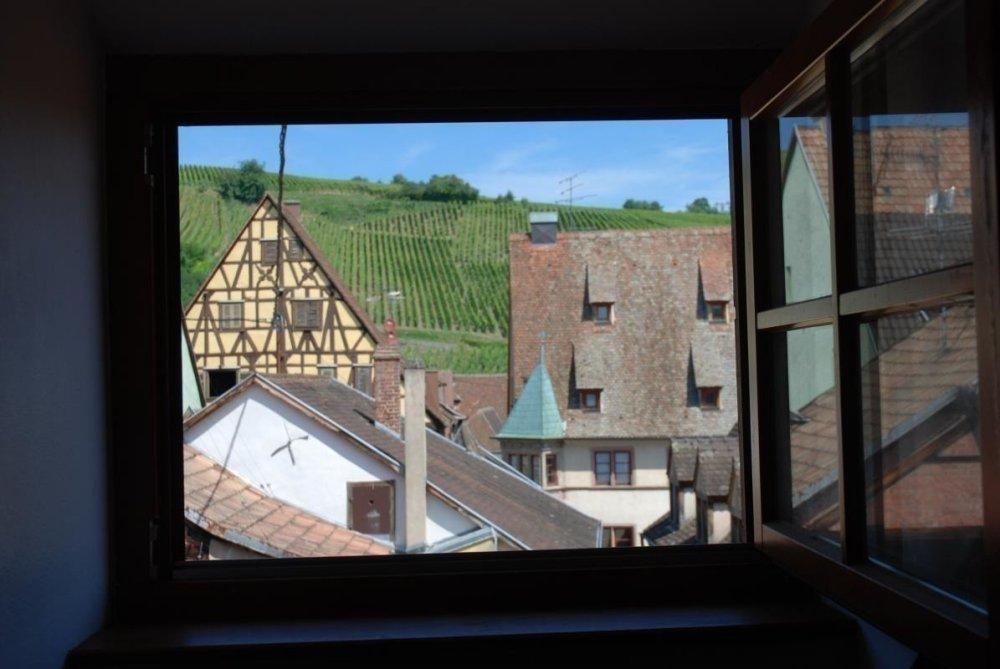 City break - la perle d'Alsace - Monsieur LAUTIER Laurent