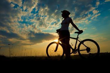 Bike Air hiring and repair