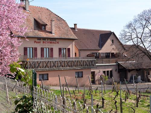Location de vacances - Gîte le Liebau - Muscat