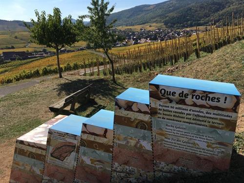 Parcours Géovino : Les roches et les sols