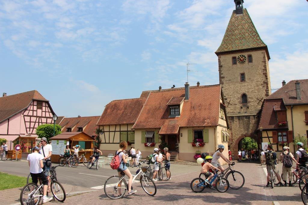 https://apps.tourisme-alsace.info/photos/ribeau/photos/229005855_1.jpg