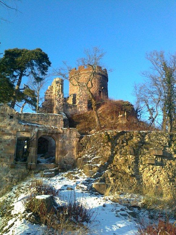 Geführte Wanderung - Die 3 Burgen von Ribeauvillé