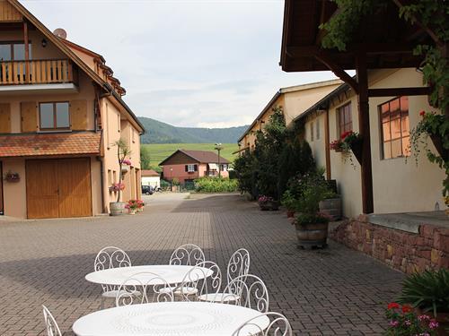 Visites guidées au domaine Schwach