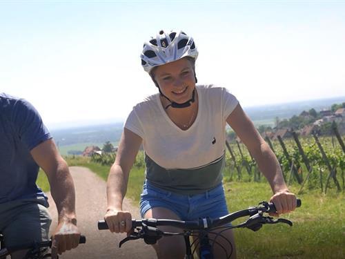 Vélo, pique-nique et vin